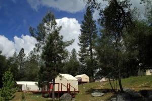 American River Camp